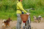 Yuno in fietsmand, Kari en Ronja - 13 juli 2013 (9061)