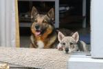 Kari en Yuno wachten op hun beurt - 11 augustus 2013 (1521)