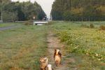 Yuno, Ronja en Kari - 15 augustus 2013 (9588)